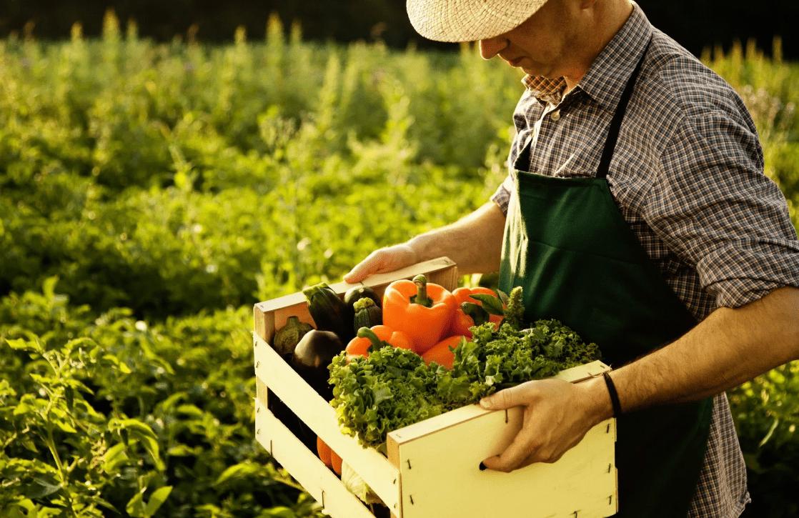19 июня вУкраине - День фермера / фото god2019.net