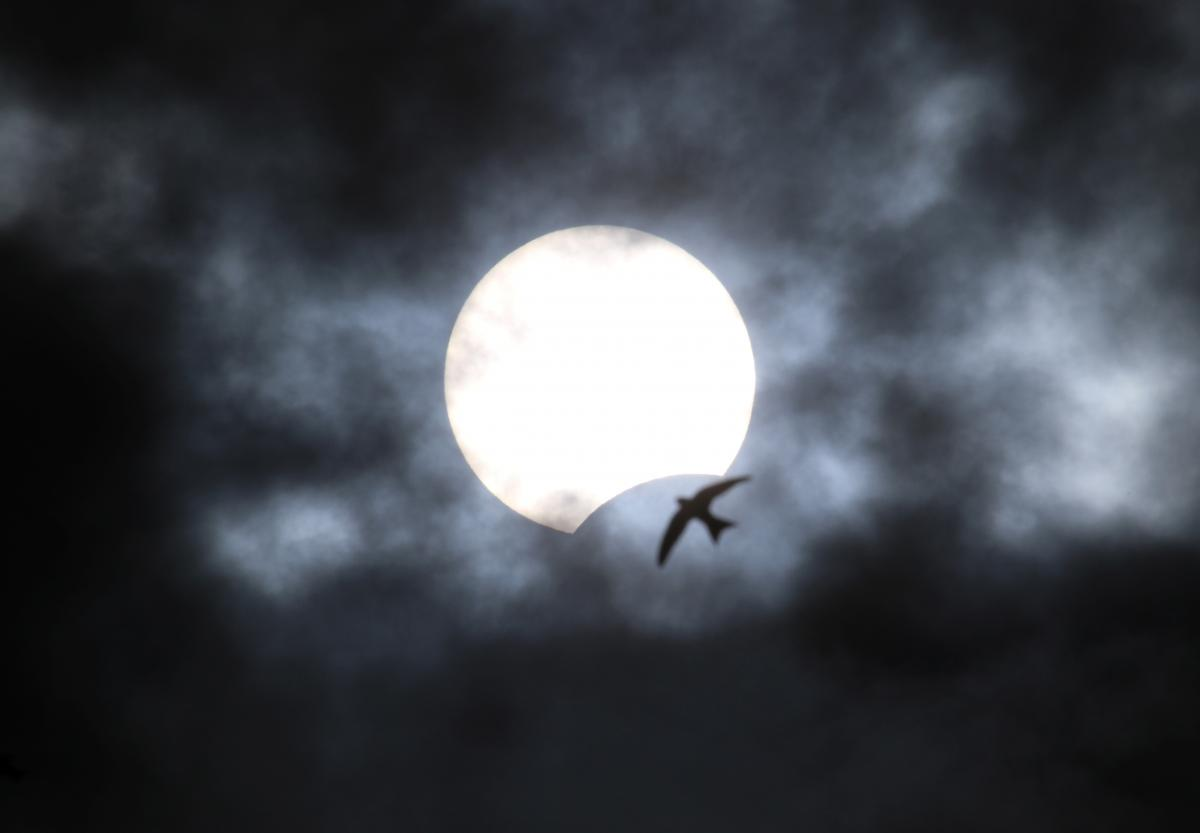 В лунные затмения разум подавляет чувства, а в солнечные затмения, наоборот – чувства преобладают над разумом / REUTERS
