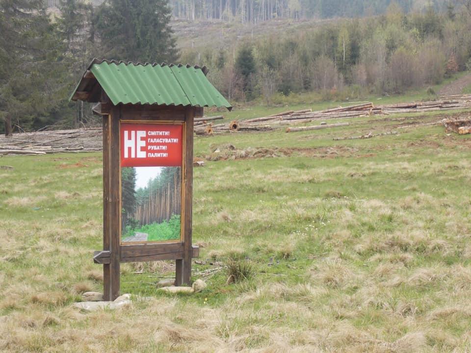 Гослесагентство отрицает связь между вырубкой леса и паводками / фото facebook.com/tetyana.schastlyvenkoslezinska