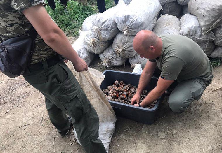 На судне у браконьеров было 60 мешков, в которых более 30 тысяч рапанов / фото ГПСУ