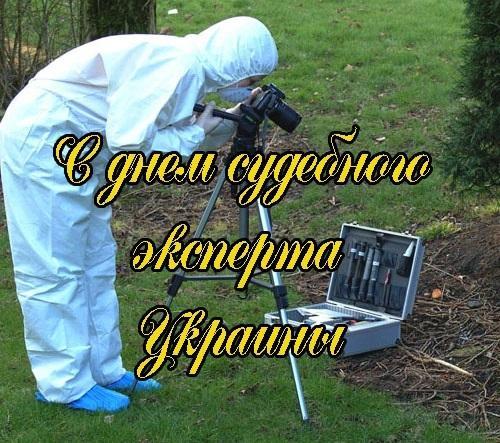 День судебного эксперта - поздравление в картинках / фото klike.net