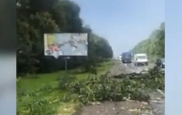 Непогода добралась до Львовщины / скриншот видео