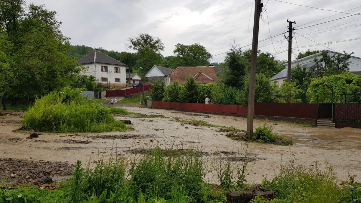 Злива підтопила кілька районів на Закарпатті / ДСНС