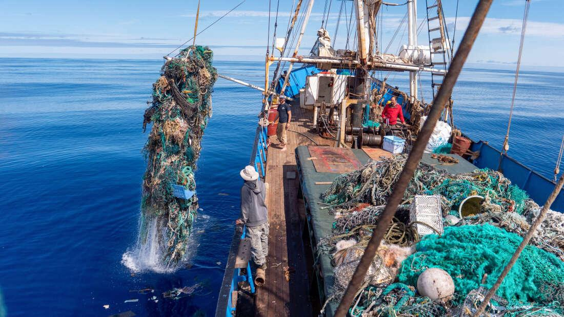 При цьому в сітках виявили також кістяки вже померлих морських тварин / Ocean Voyages Institute