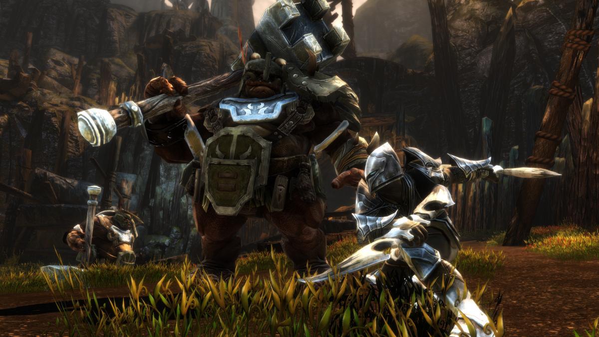Kingdoms of Amalur: Re-Reckoning выйдет наPS4 и Xbox One / фото thqnordic.com