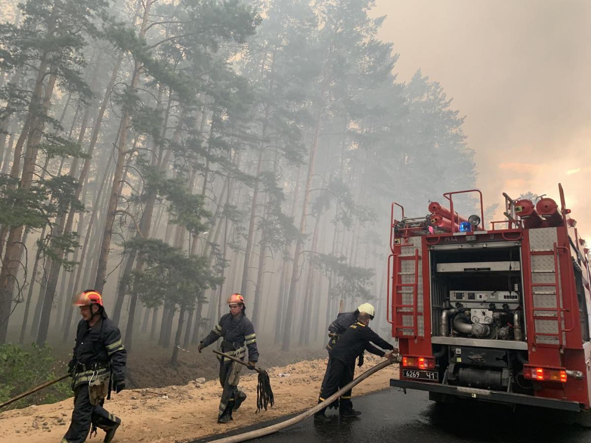На Луганщине бушует лесной пожар / фото ГСЧС