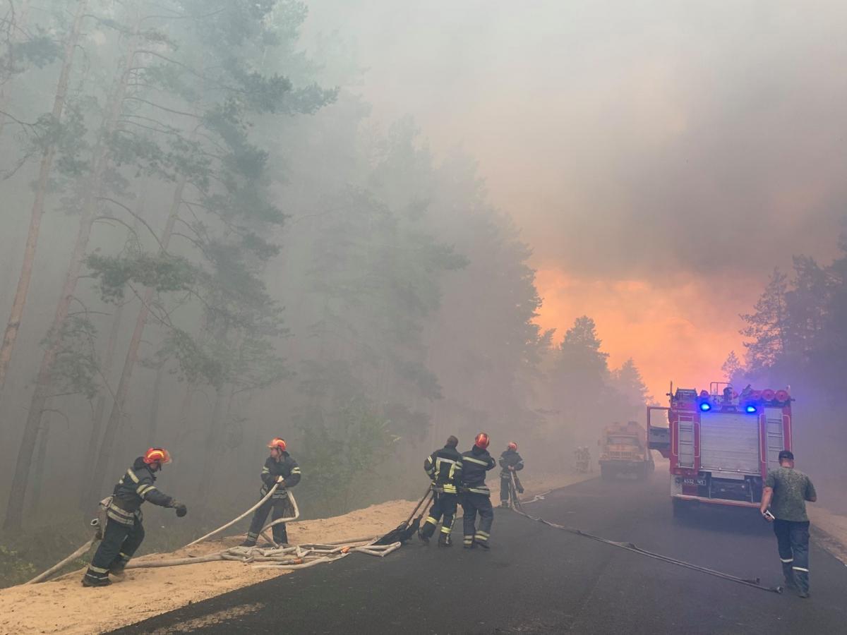 Лісова пожежа виникла 6 липня / фото facebook.com/MNS.GOV.UA