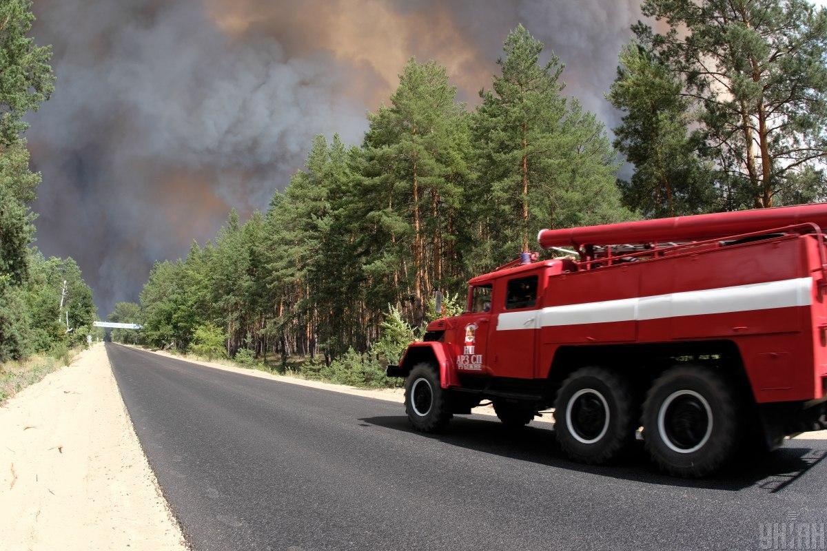 Жертвами лесных пожаров на Луганщине стали 5 человек / фото УНИАН