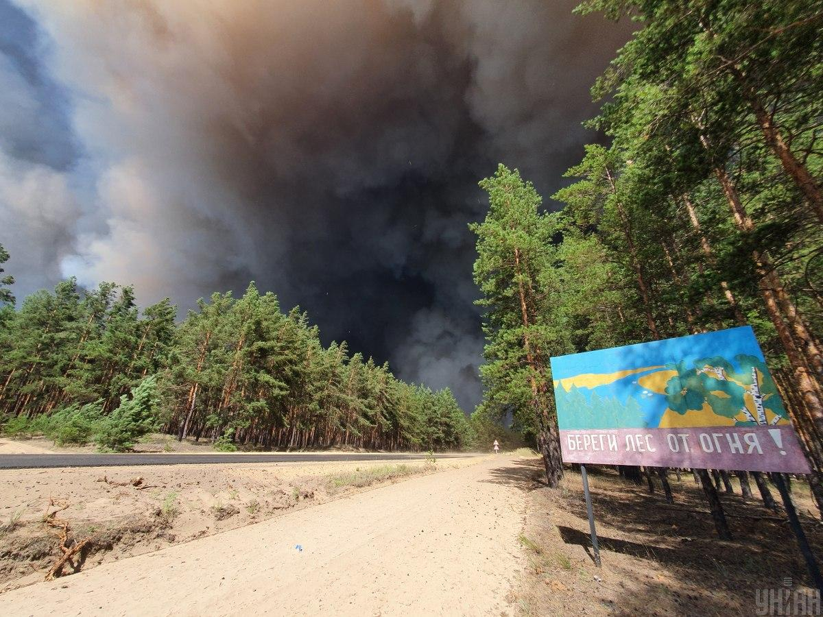 Голова Луганської ВЦА розповів, що відбувається в епіцентрі полум'я / фото УНІАН