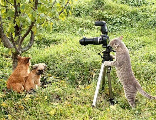 Прикольная картинка на День фотографа