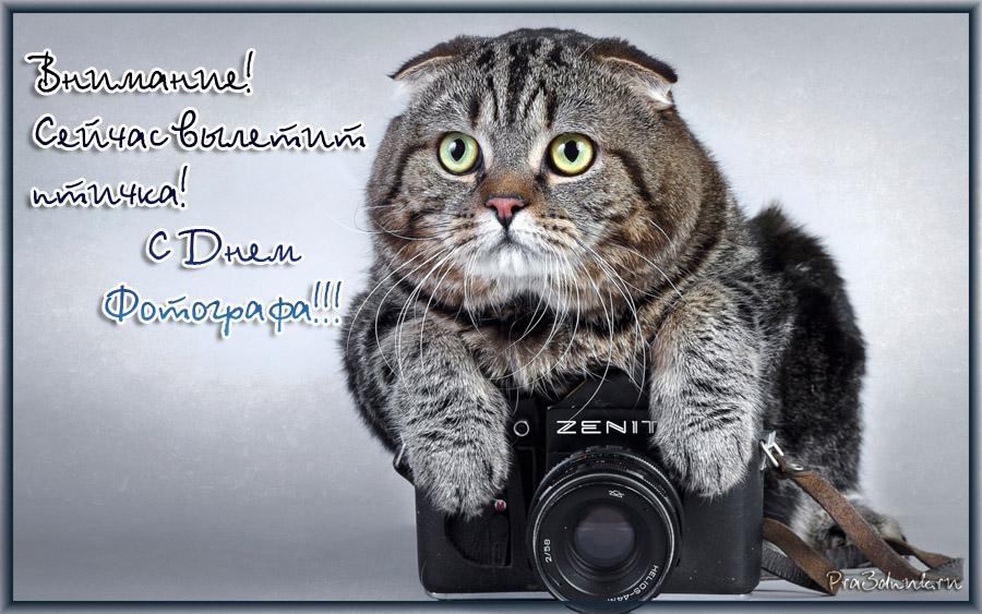 Поздравление на День фотографа