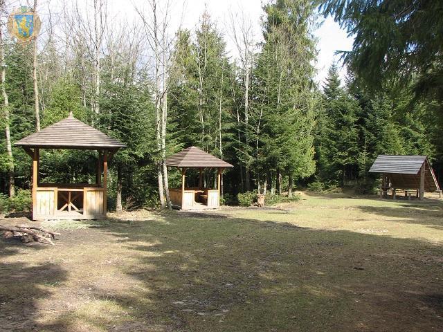 В лесах Львовщины обустроили пикник-зоны / фто loda.gov.ua