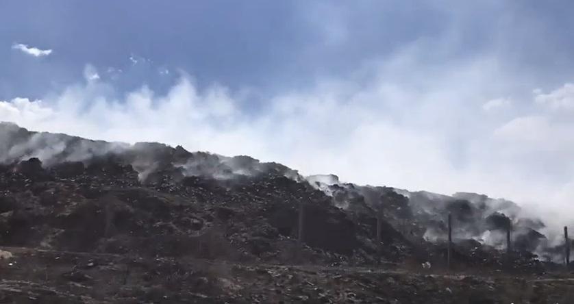 Полигон загорелся в результате масштабного лесного пожара / фото Северодонецкий горсовет