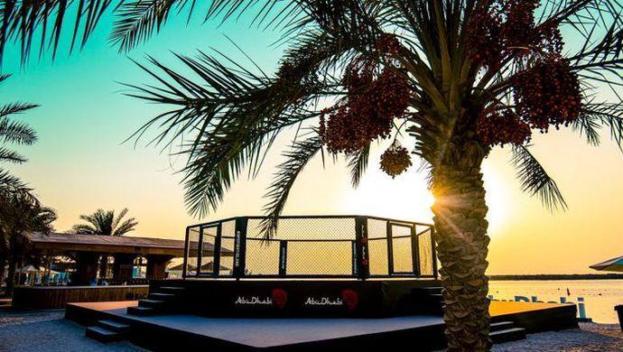 Бійцівський острів знаходиться в ОАЕ / фото twitter.com/UFCNews