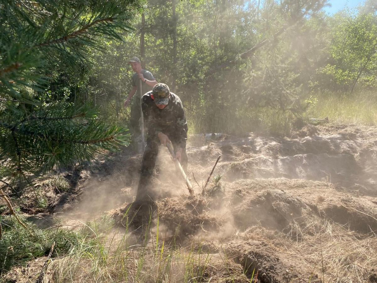 К тушению масштабного лесного пожара привлекли пограничников ООС / фото facebook.com/DPSUkraine