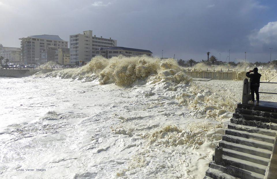 Побережье в Кейптауне покрылось пеной из-за шторма / twitter.com/ReenvalSA