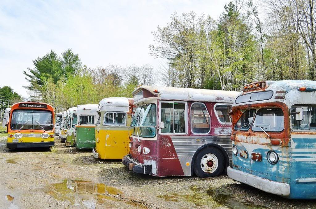 """В """"Слугах Народа"""" хотят закупать подержанные автобусы"""