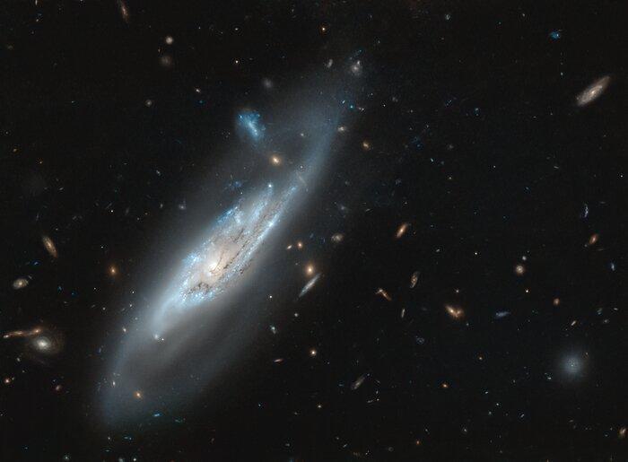 Галактика NGC 4848 доступна для наблюдения с Северного полушария Земли / фото ESA/Hubble & NASA, M. Gregg