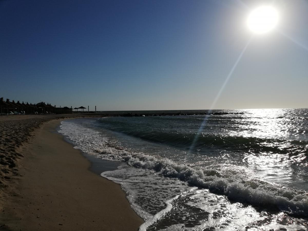 Пляжи Бердянской косы / фото Марина Григоренко