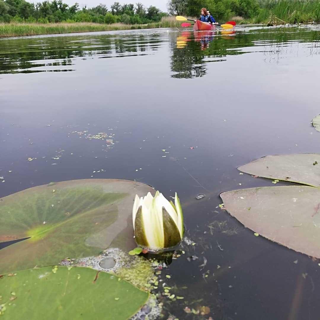 Дніпровська рів'єра / фото Facebook-сторінка KayakClub Dnipro