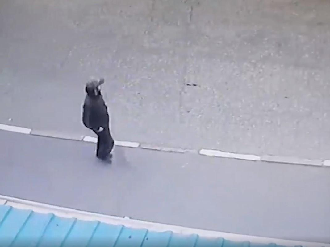 Відносно чоловіка порушено кримінальну справу/ скріншот з відео