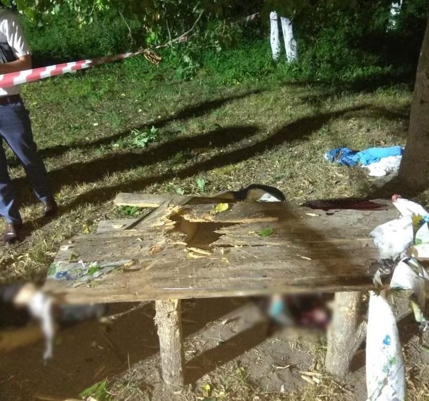 Мужчина, который принес боеприпас, погиб / фото ГУ НП в Черниговской области