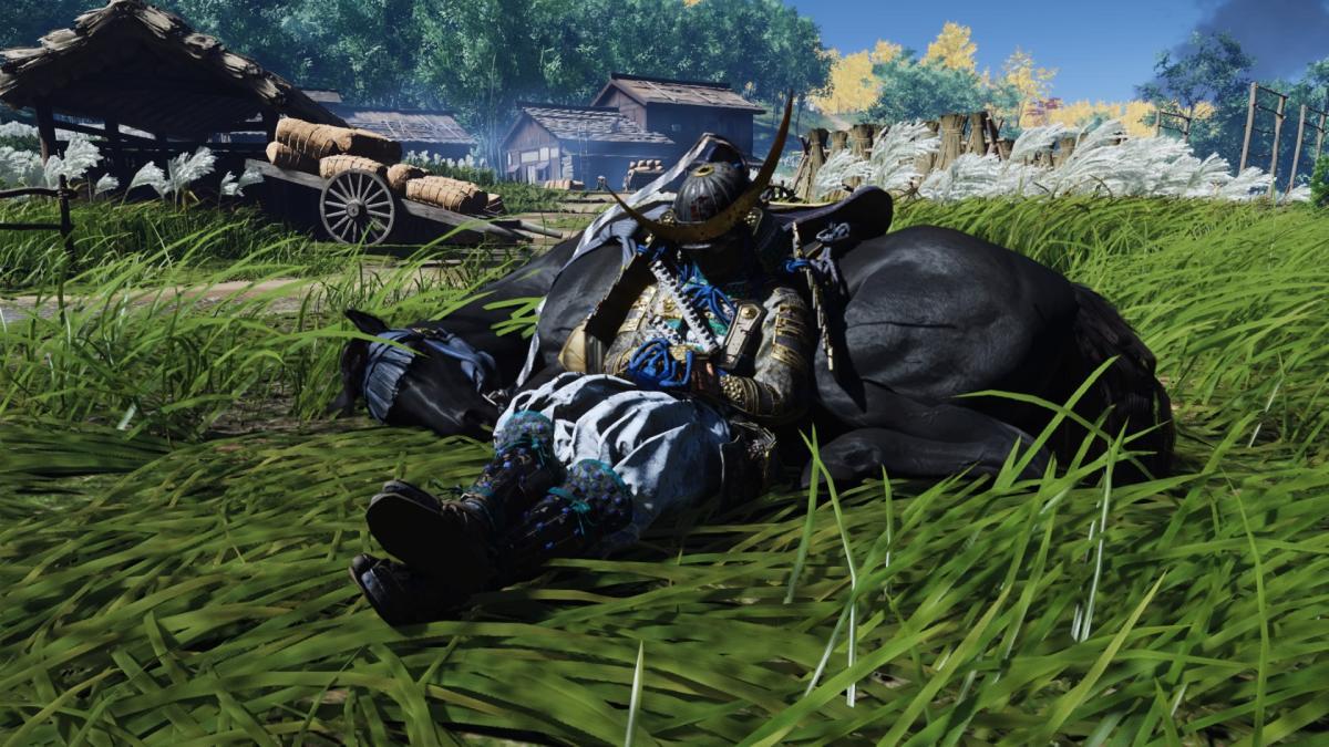 Дзин отдыхает после славной битвы / скриншот
