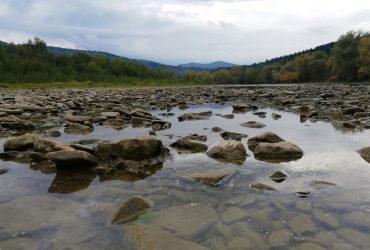 Екологи б'ють на сполох: 2021 рік в Україні буде ще спекотнішим за попередній, степ атакує посуха