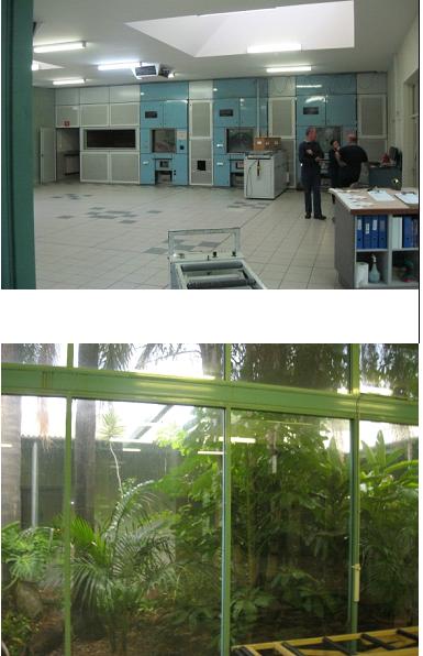 У цеху приватного крематорія в Західній Австралії, праворуч його зимовий сад