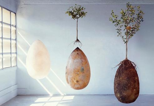 Капсула «життя після життя» від італійського похоронного дизайну