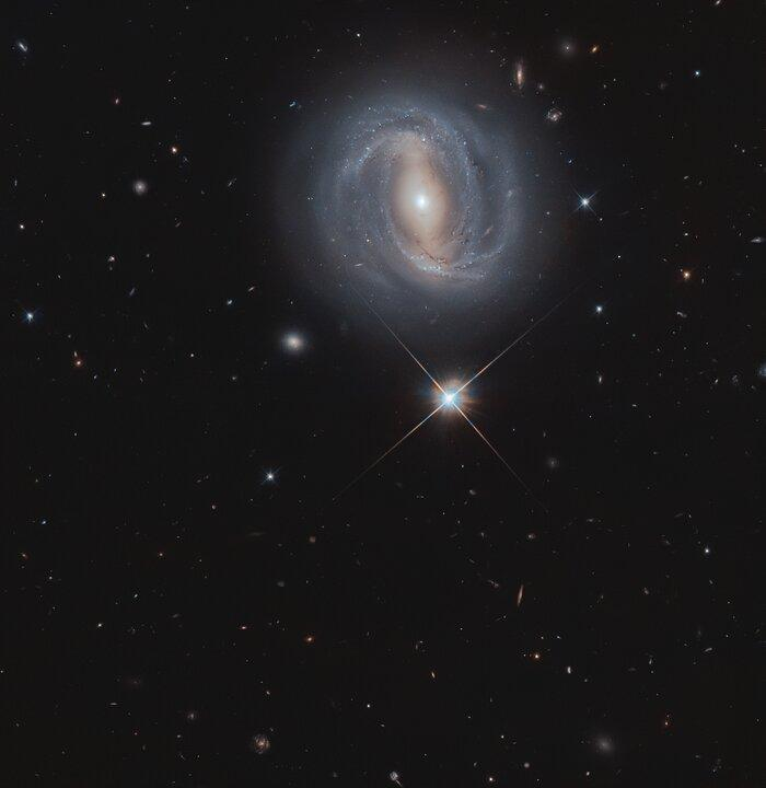 Самая яркая звезда на этом снимке расположена всего лишь в 2,5 тыс. световых лет от Земли / фото ESA/Hubble & NASA, M. Gregg