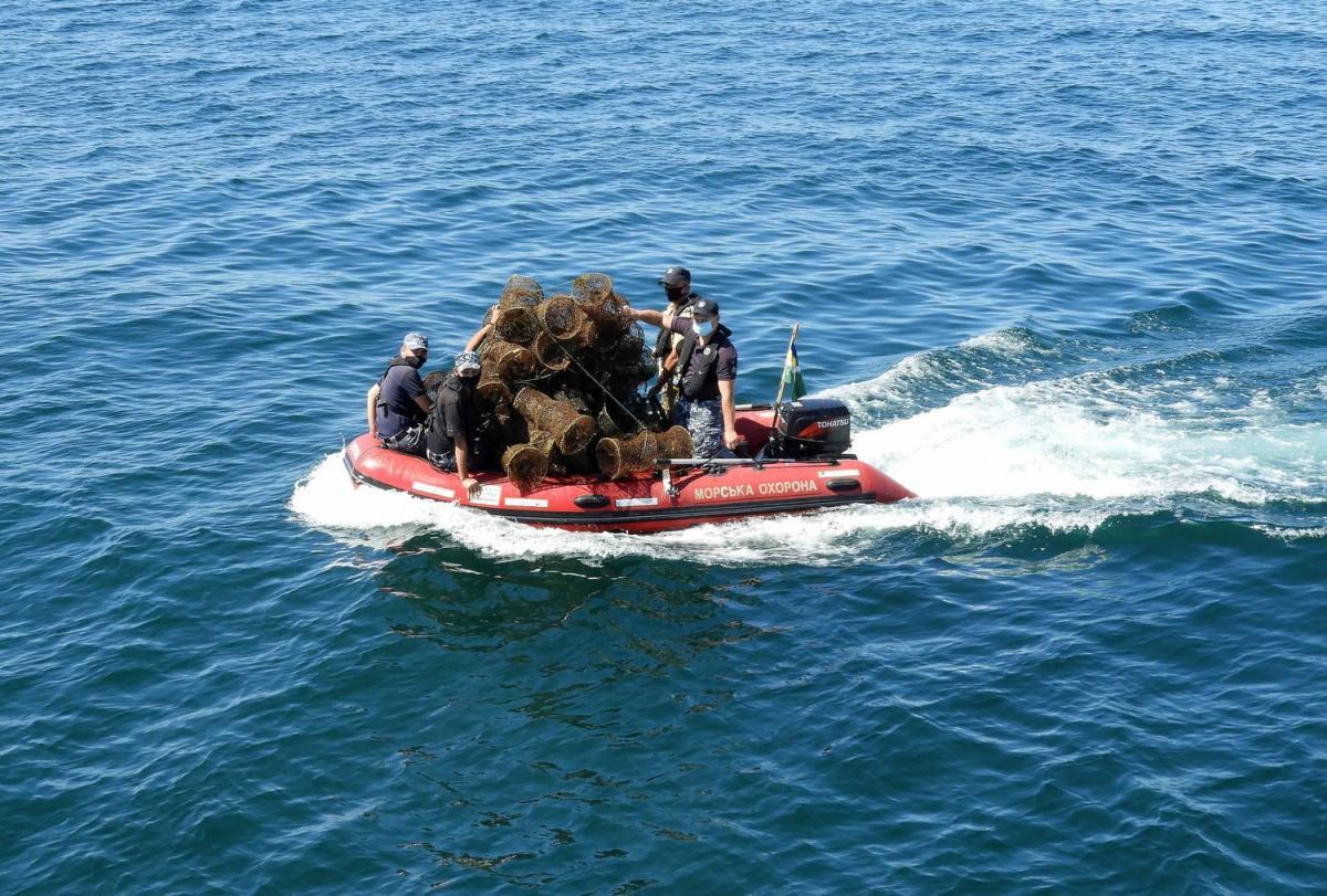 С браконьерских ловушек освободили и отпустили почти 800 каменных крабов/ фото dpsu.gov.ua