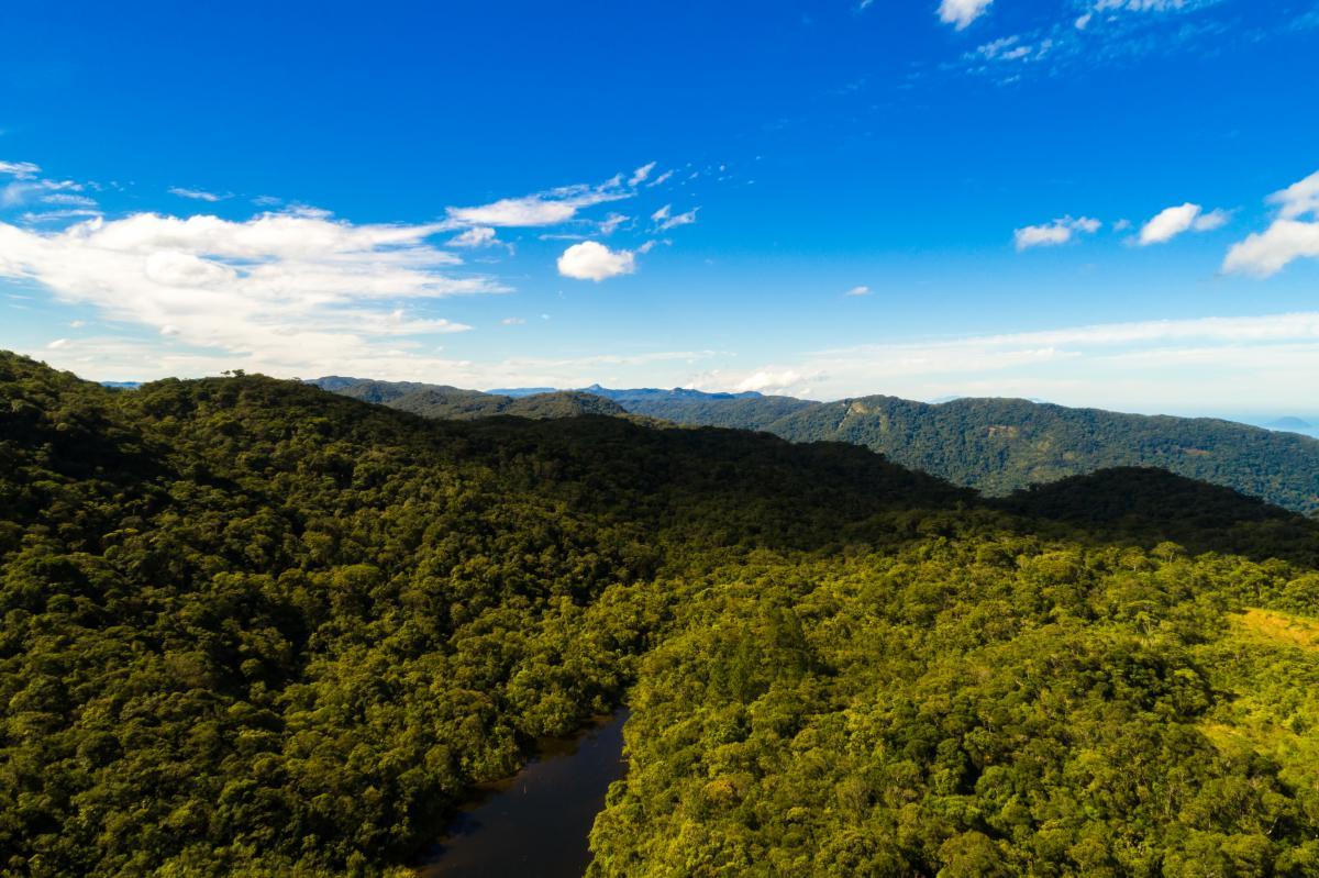 Нова Гвінея - це острів у Тихому океані, розташований на північ від Австралії / фото ua.depositphotos.com