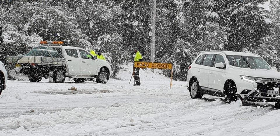 Південно-схід Австралії накрив сильний снігопад / twitter.com/SNOWSEARCH_aus