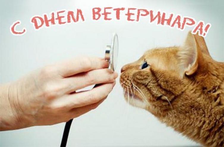 Листівки з днем ветеринара / depo.ua