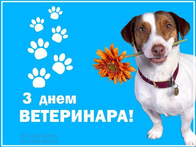 Листівки з днем працівників ветеринарної медицини / art-shop.com.ua
