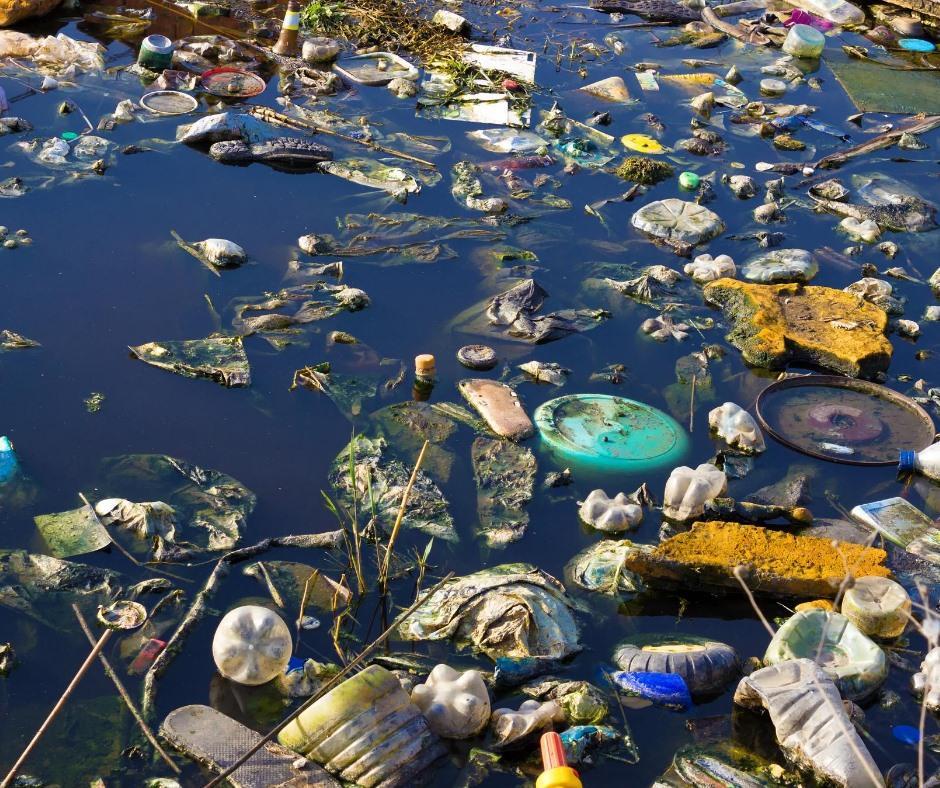 Сміття, яке викидають вздовж річок, забруднює води західної України / Фото facebook.com/AndriyMalovany