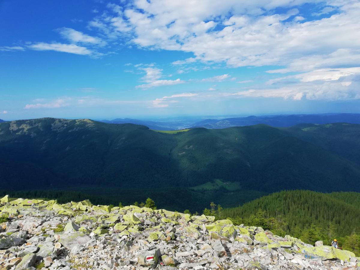 Поход на гору Хомяк из Татарова будет не таким уж легким, как кажется / фото Марина Григоренко