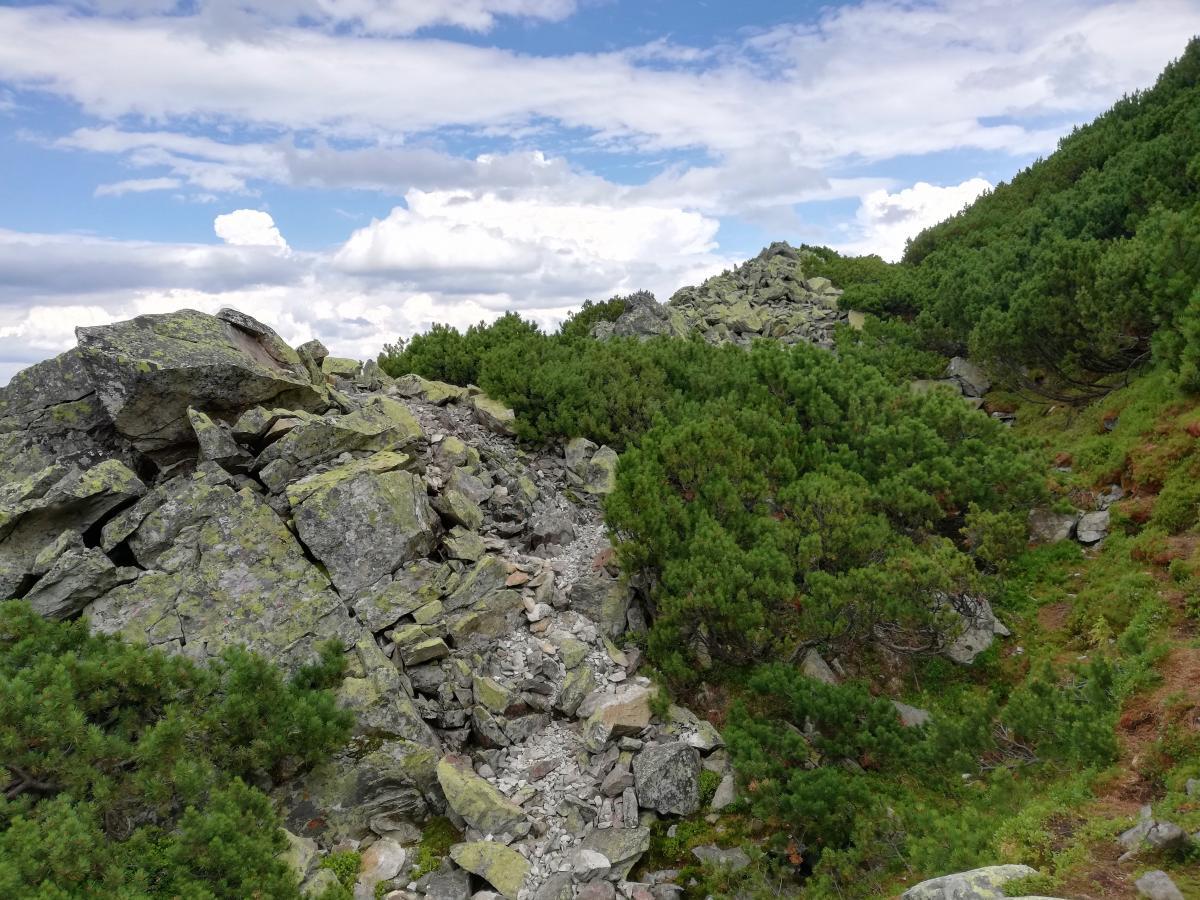 Завершающая часть маршрута на Хомяк каменистая и довольно опасная / фото Марина Григоренко