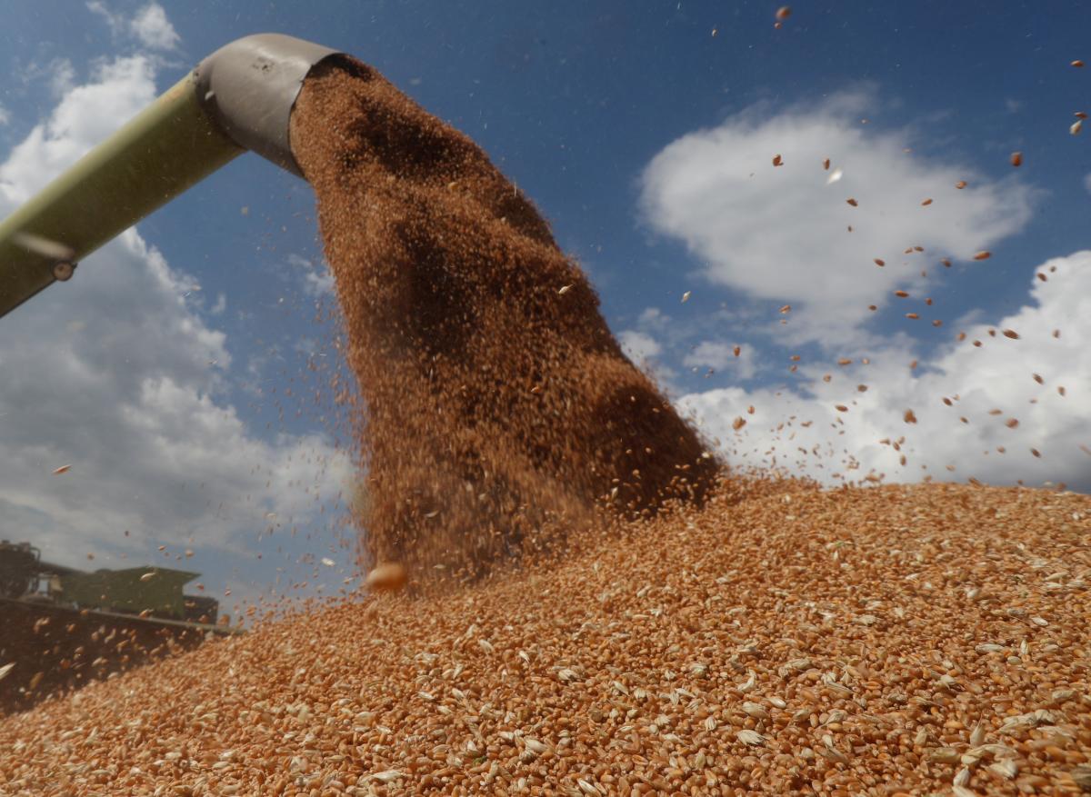 Собрать третий подряд рекордный урожай зерновых украинским аграриям не удалось / фото REUTERS
