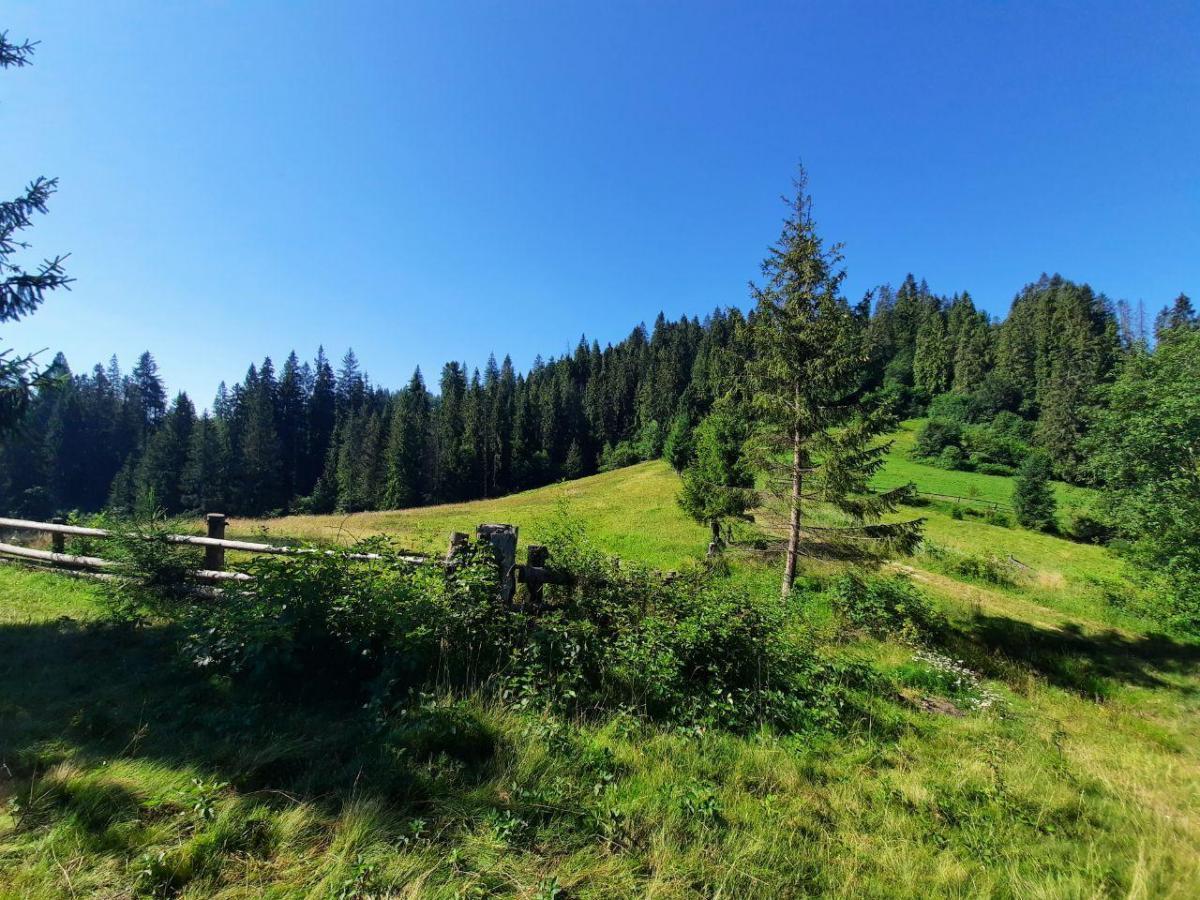 Такие панорамы открываются при подъеме на гору Ильза / фото Ольга Броскова