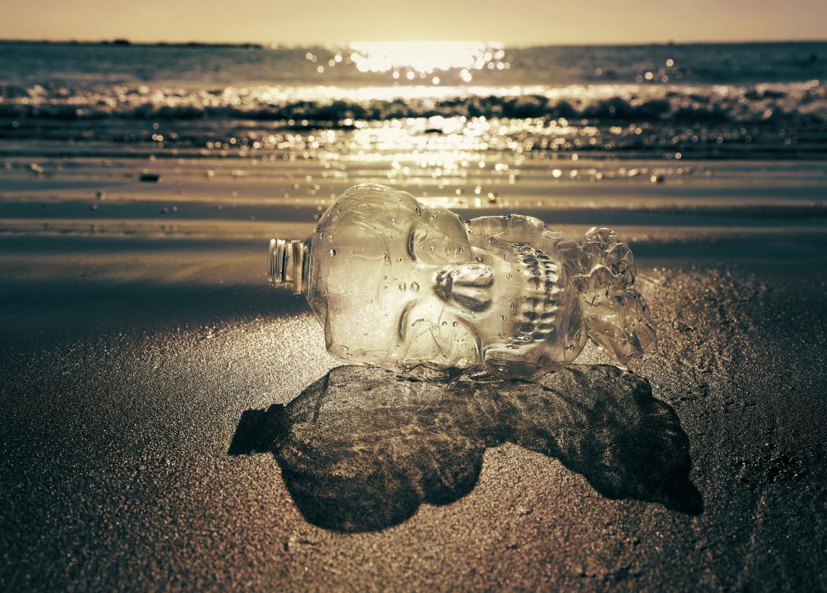 Пластик загрязняет воду и убивает морских животных / фото ua.depositphotos.com