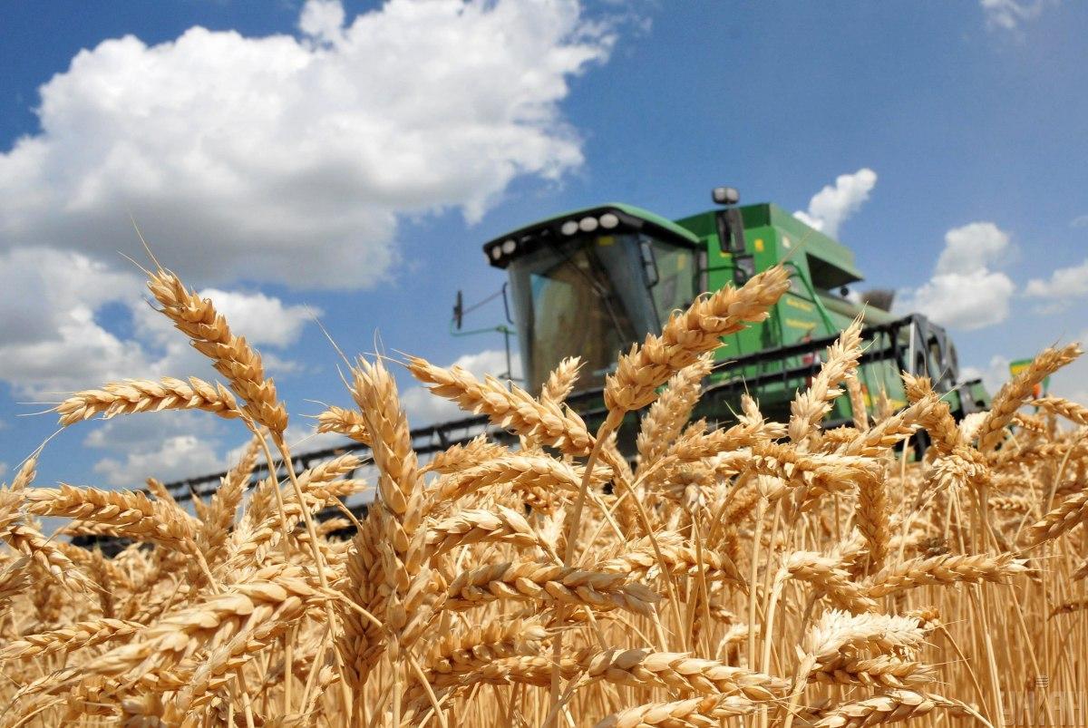 На Херсонщине начата уборка ранних зерновых культур / фото УНИАН