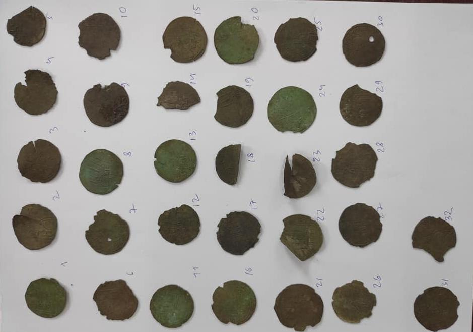 На Житомирщине нашли древние монеты / фото facebook.com/oleksandr.alfyorov