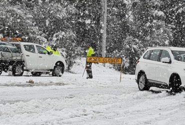 Юго-восток Австралии накрыл сильный снегопад (видео)