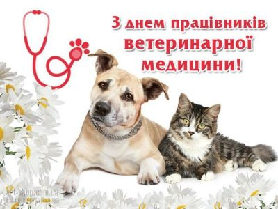 den-veterinarnogo-rabotnika-otkritki-s-pozdravleniyami foto 8