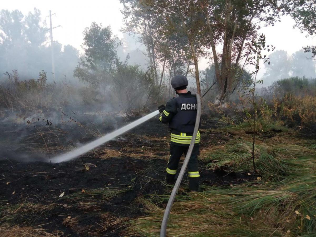 Возгорание сухой травы зафиксировано на площади около 90 гектаров / фото полиция ГСЧС области