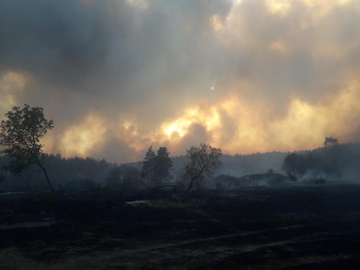 Сгорели 22 жилых дома / фото ГСЧС