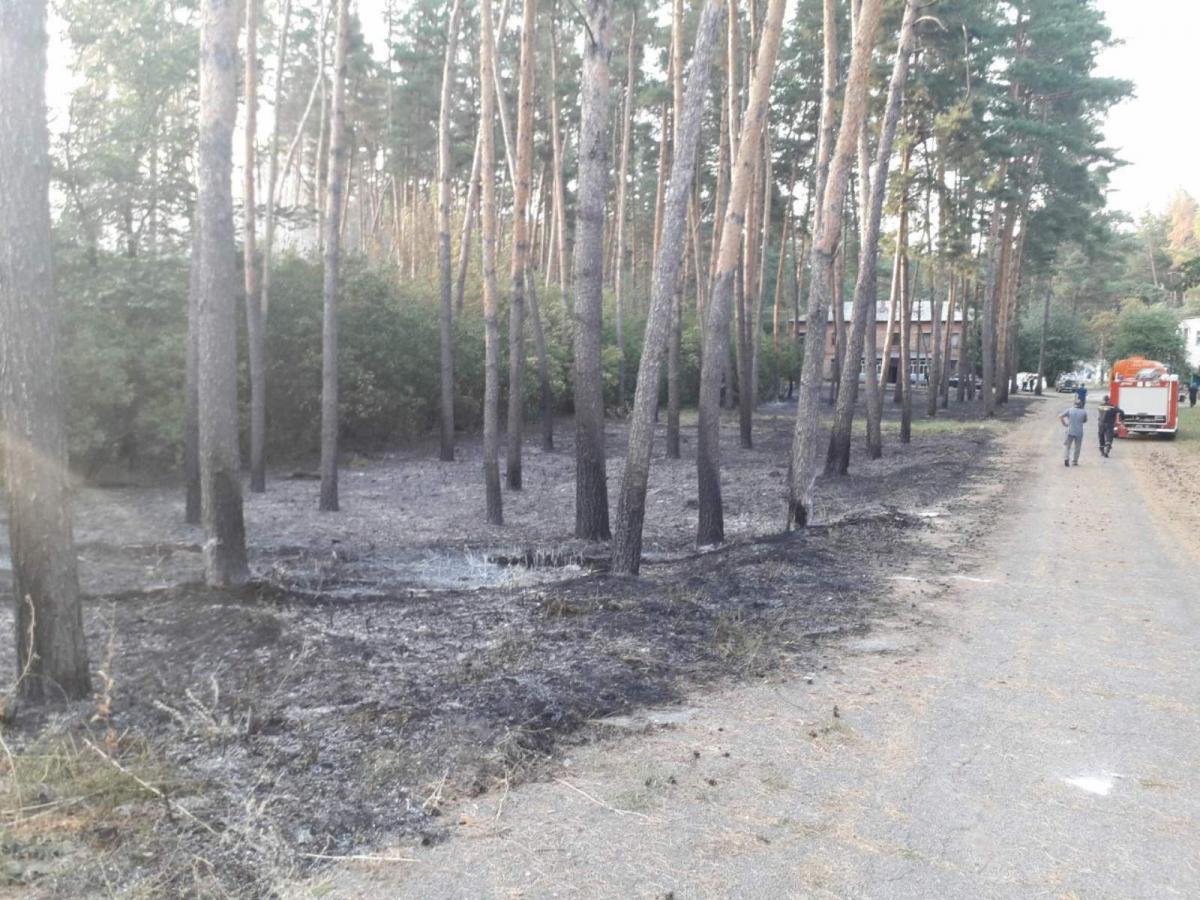 На Харьковщине устанавливают причины пожара / фото kh.dsns.gov.ua