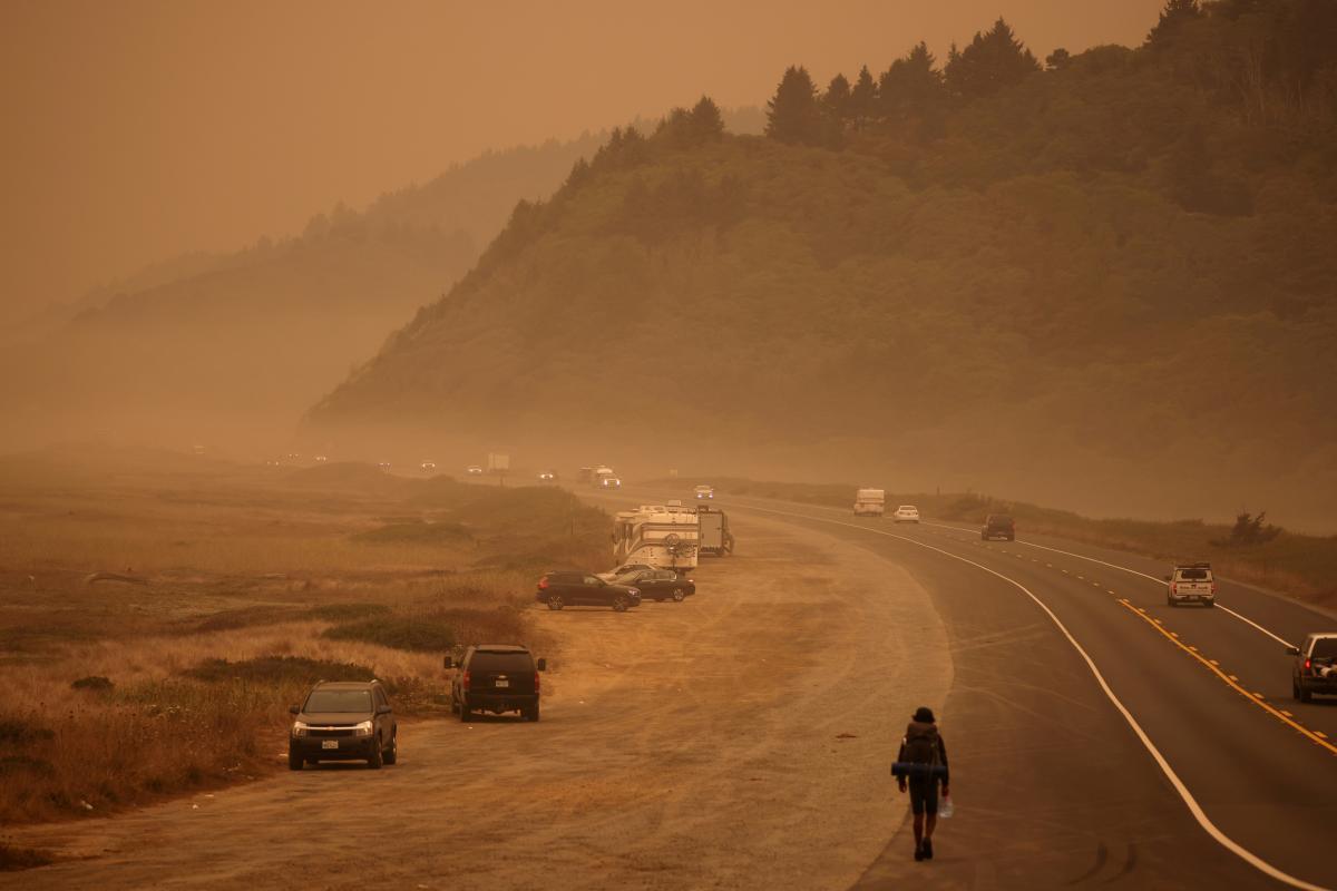 Пожежі у Каліфорнії - страхувальники заявили про мільярдні збитки: деталі/ REUTERS